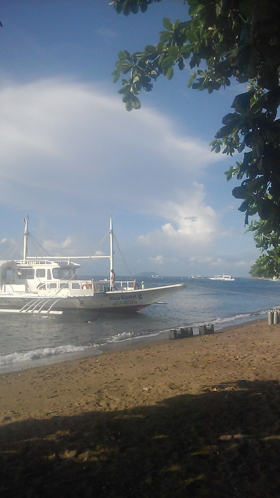 BEACH LOT FOR SALE IN DAUIN, NEGROS ORIENTAL