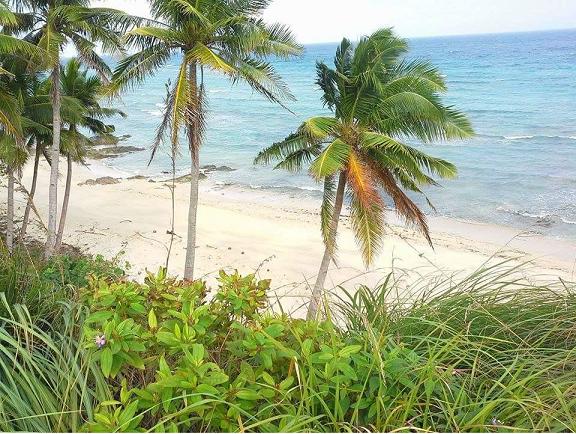 ROMBLON BEACH LOT FOR SALE FOR DEVELOPMENT