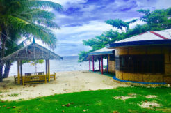 siquijor beach resort for sale