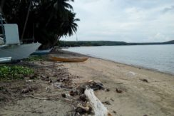 siquijor beach lot for sale