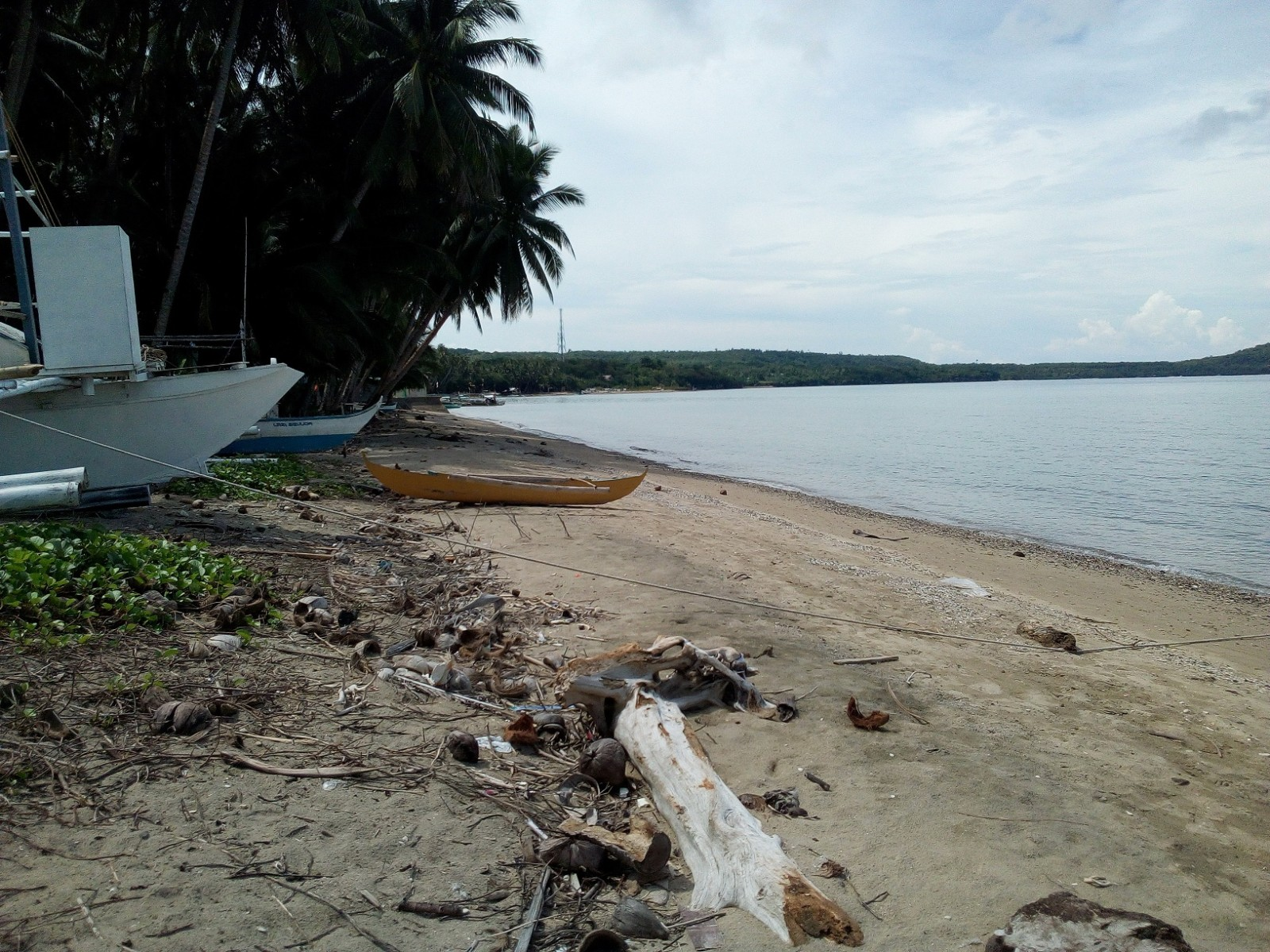 SIQUIJOR BEACH LOT FOR SALE WITH TAX DEC