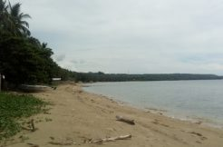 maria siquijor beach lots for sale