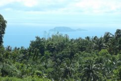 Baslay Dauin ocean view lots for sale