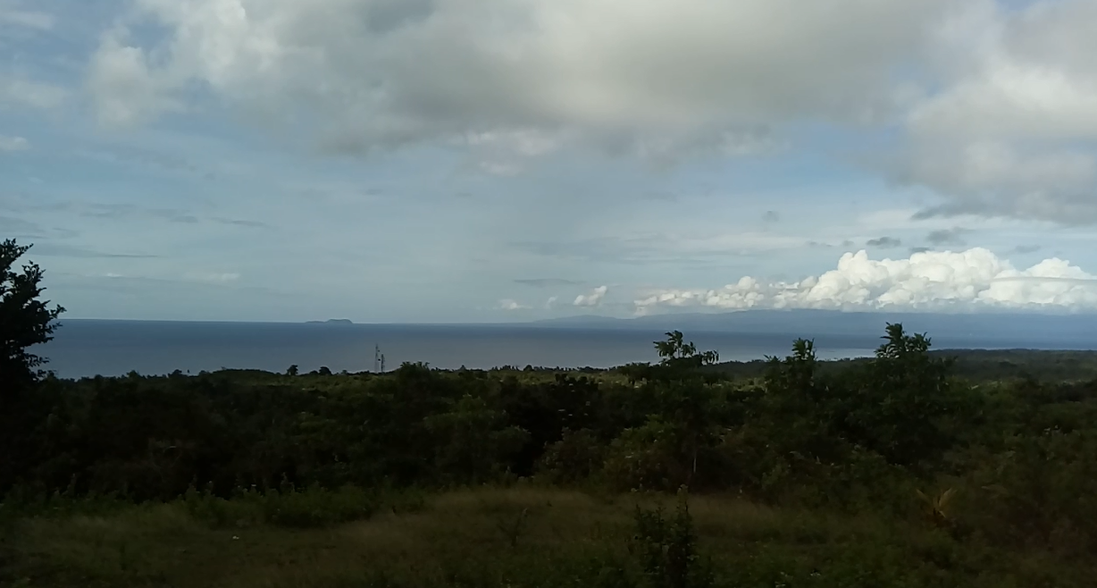 SIQUIJOR OCEAN VIEW PROPERTY FOR SALE
