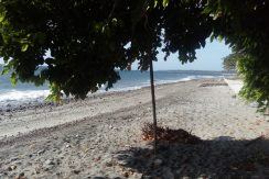 beach lot in dauin