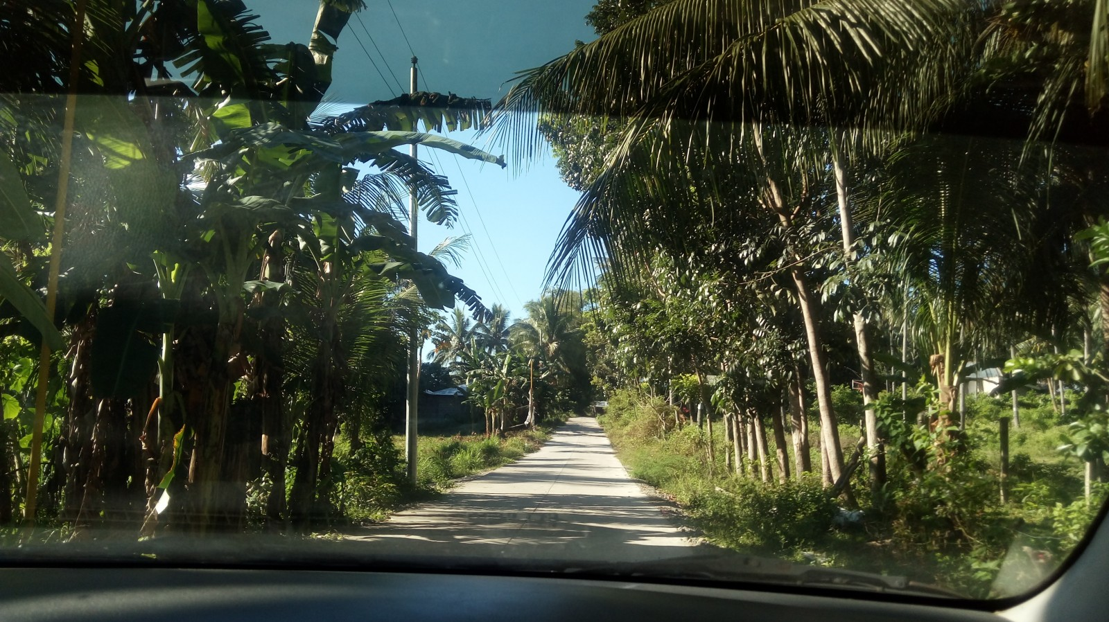 BACONG ESTATE LOTS FOR SALE