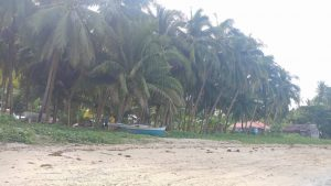 Siquijor beach lots for sale