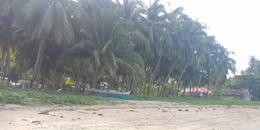 Siquijor beach lots for sale lot sale