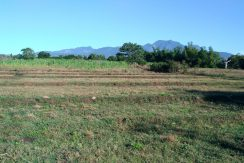 zamboanguita lots for sale