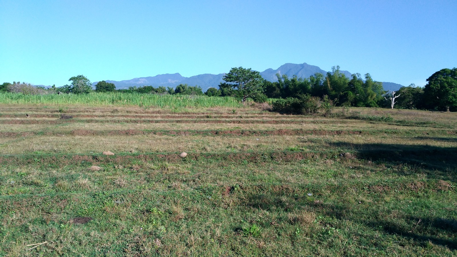 RESIDENTIAL ZAMBOANGUITA LOTS FOR SALE