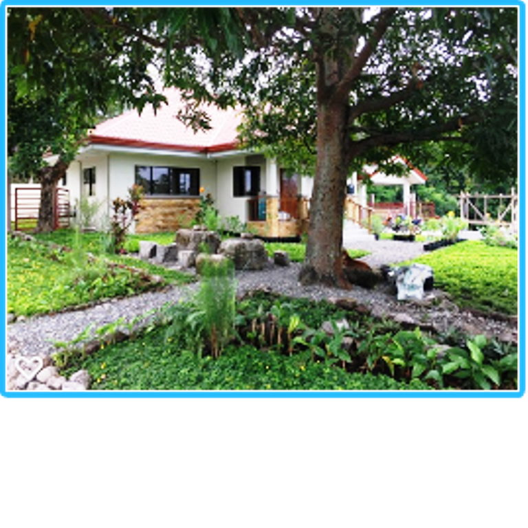 DAUIN HOUSE AND LOT FOR SALE – COMMUNITY SETTING