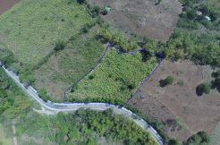 farm lot for sale in zamboanguita negros oriental