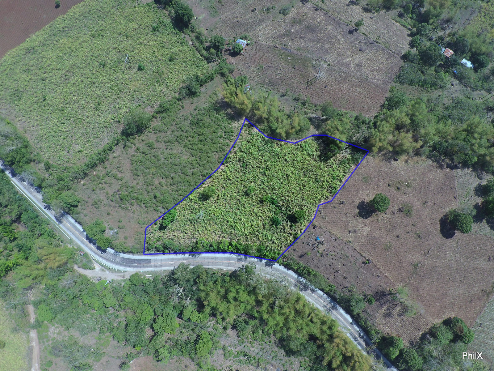 FARM LOT FOR SALE IN ZAMBOANGUITA