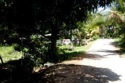 siquijor development land for sale