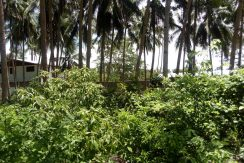 siquijor lot for sale with beach access