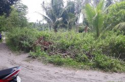 lot for sale near the beach in dauin