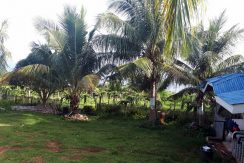 House and Lot Lower Cabangcalan, Lazi, Siquijor (22)