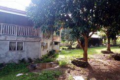 House and Lot Lower Cabangcalan, Lazi, Siquijor (26)