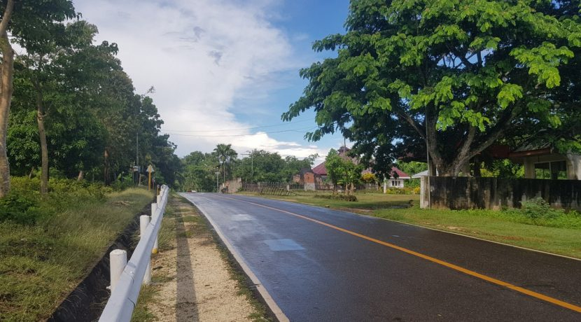 Lot for Sale Nagerong, Lazi, Siquijor (14)