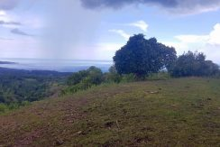 Ocean View Lot for Sale Calunasan, Maria, Siquijor (17)