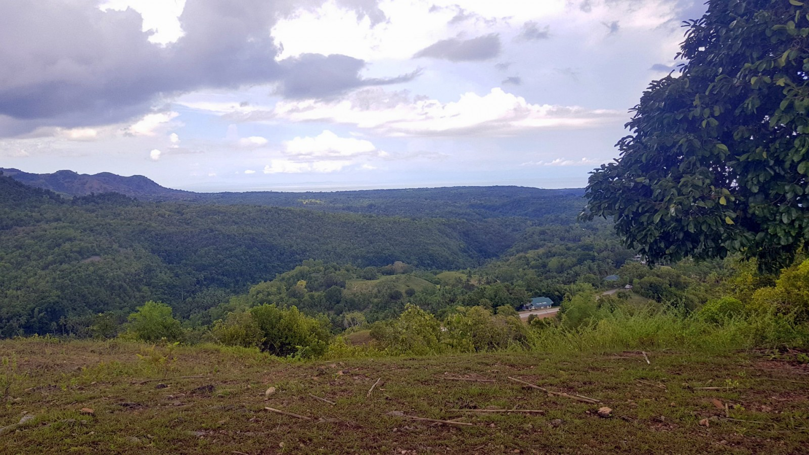 OCEANVIEW LOT FOR SALE IN SIQUIJOR