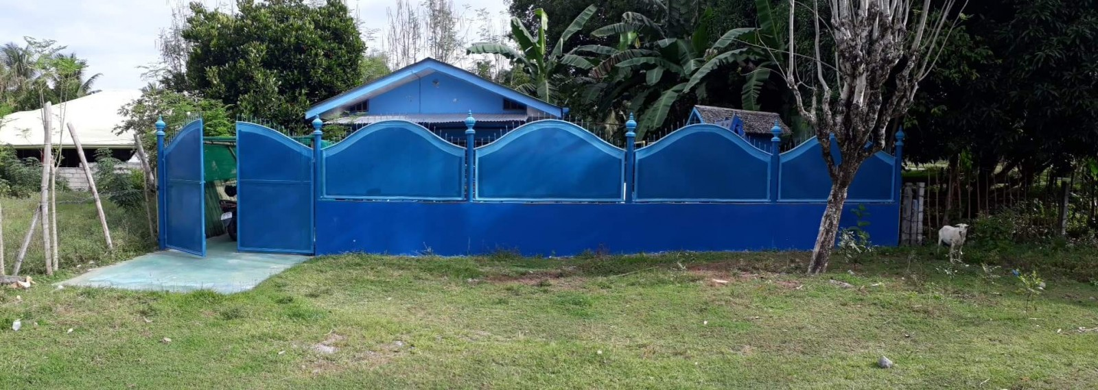 House and Lot For Sale Outside Bacong Town