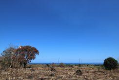 Zamboanguita Ocean View Lots