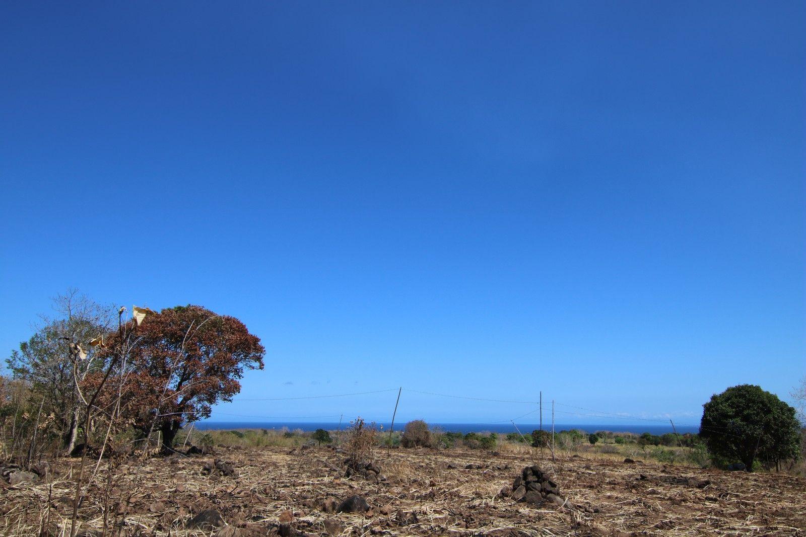 Zamboanguita Ocean View Lots for Sale