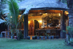 A magnificent beach-park Residence For Sale In Samar (11)