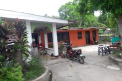house with 2 apartment units for sale in dumaguete city