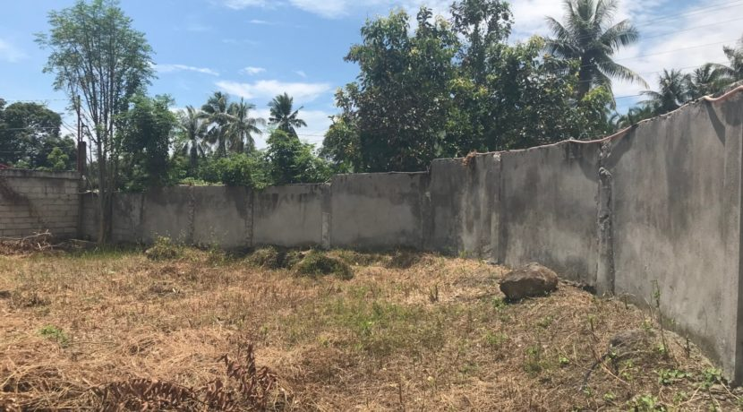 bacong lot for sale