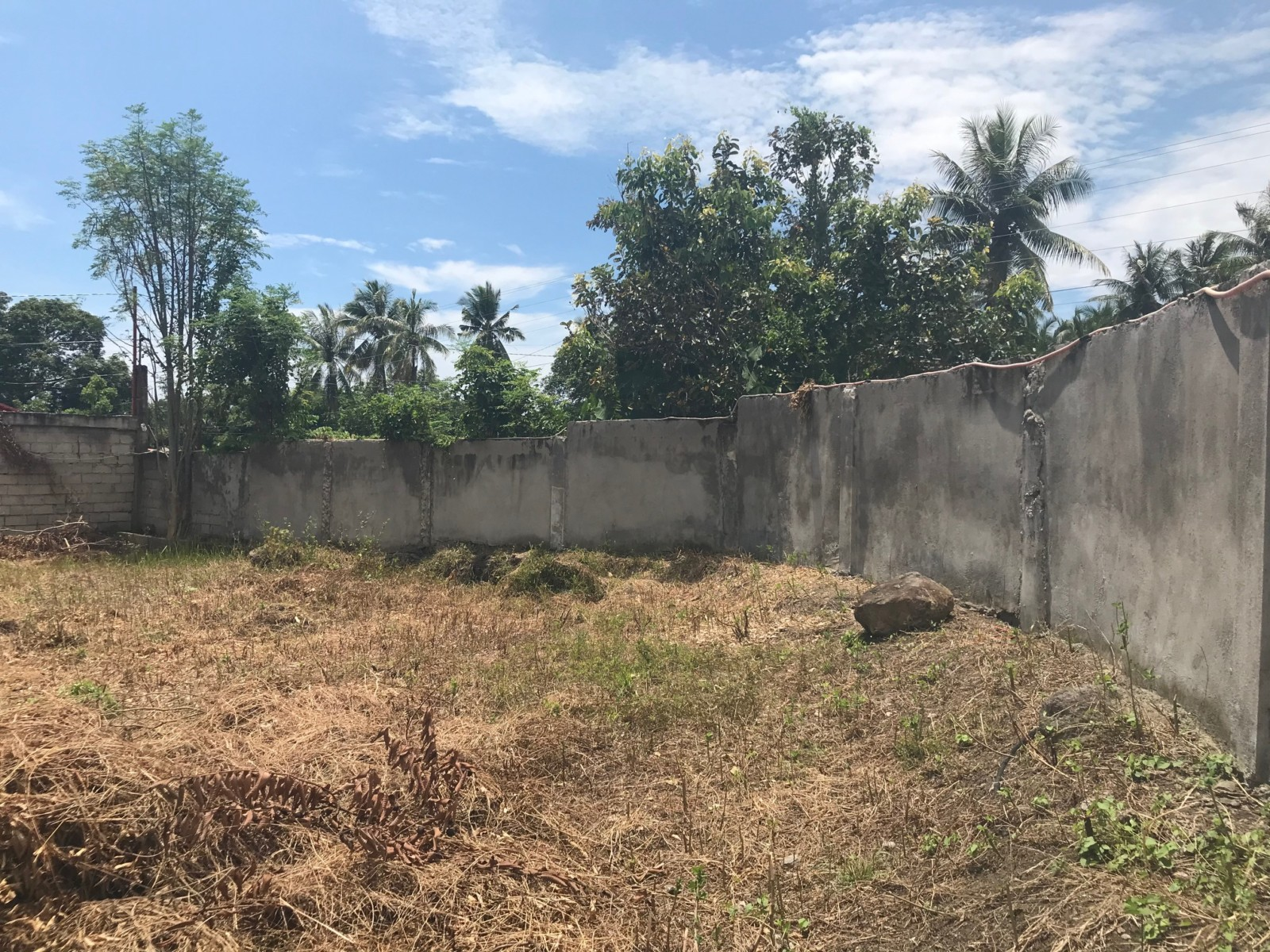 Bacong Lot For Sale in Quiet Development ID#14693