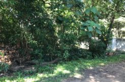residential lot for sale in dumaguete city