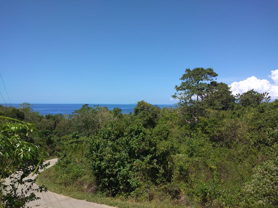 OCEAN VIEW LOT FOR SALE SAN JUAN SIQUIJOR ID SIQ0046