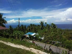 OCEAN VIEW LOT FOR SALE IN SIQUIJOR SIQ0044