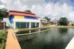beach resort in bohol