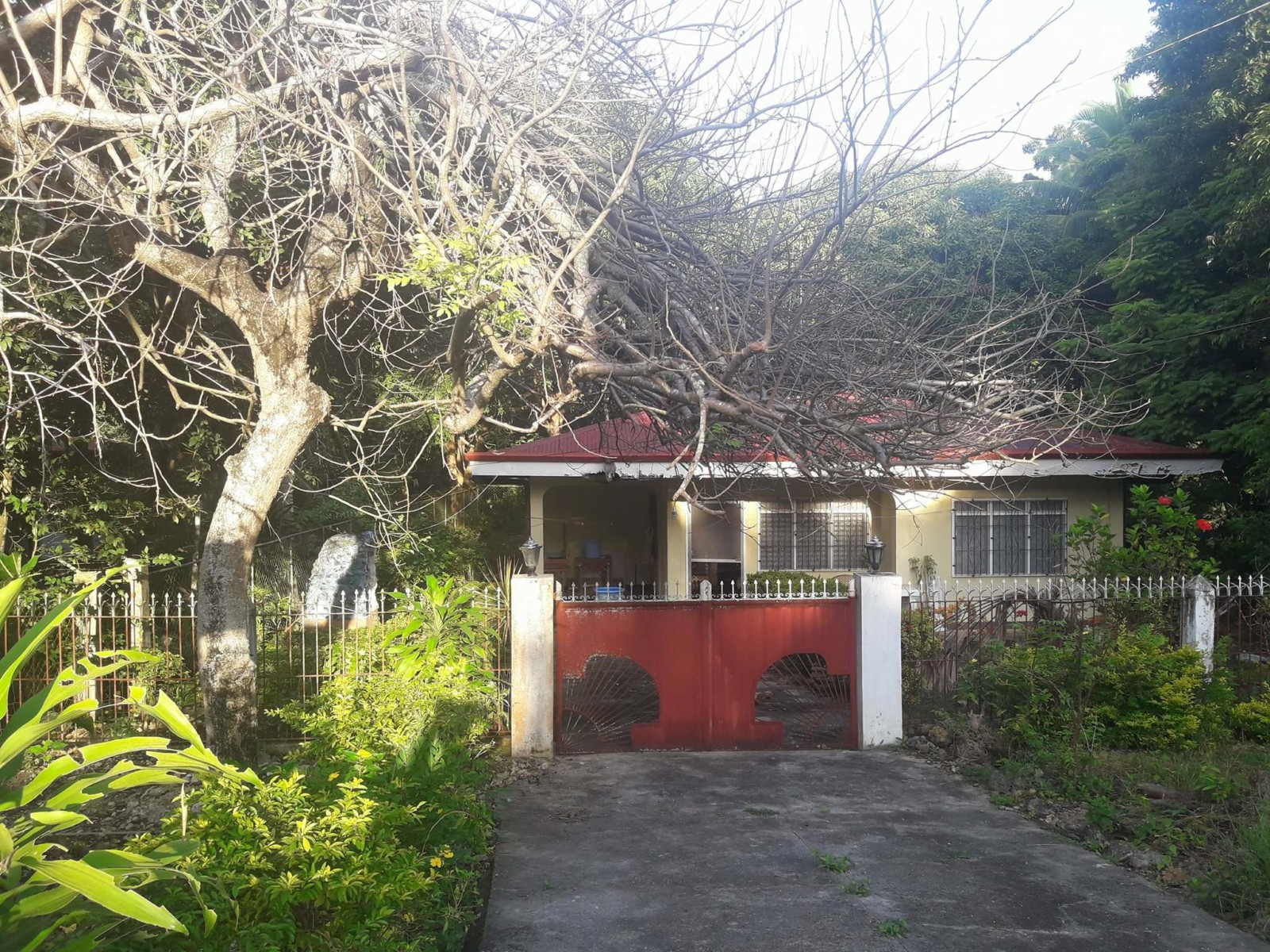 HOUSE AND LOT FOR SALE IN SIQUIJOR SIQ 0050