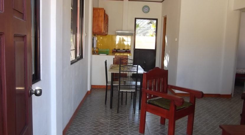 dumaguete income property (11)